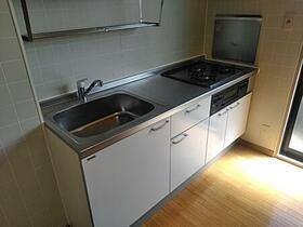 フラワーレジデンス森田 八番館 201号室のキッチン