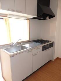 シャトレイン宿 102号室のキッチン