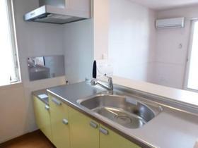 グラン・リーオA 202号室のキッチン