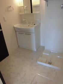 ルミナス・オリエンタルコート 203号室の洗面所