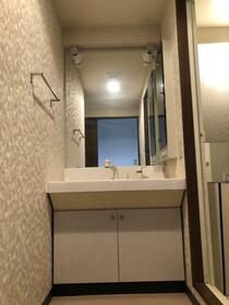 ダイアパレス横浜銀河の丘 603号室の洗面所