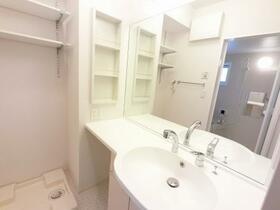 D-room思川ヴィオレ D 106号室の洗面所