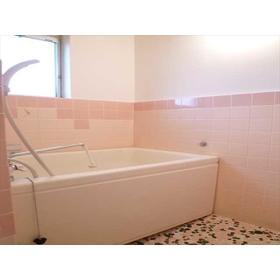 富士見コーポ 0204号室の風呂
