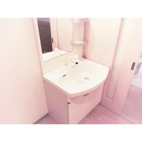 SANTAROSE 205号室の洗面所