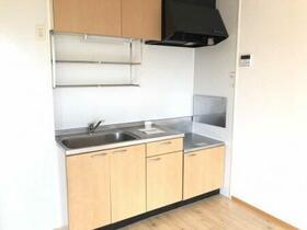 メゾン・ド・ホープ 202号室のキッチン