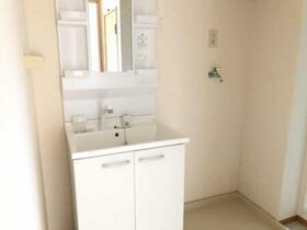 メゾン・ド・ホープ 202号室の洗面所