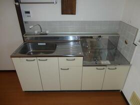 サンハイツ安田 102号室のキッチン