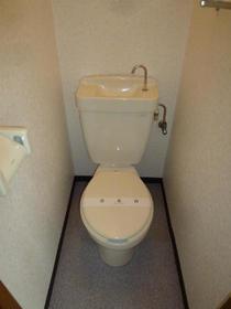 ハイツコウガクA 203号室のトイレ