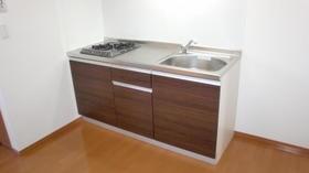 セレッソガーデン 203号室のキッチン
