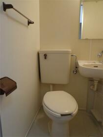 メゾン・ド・ヴェリテ 407号室のトイレ
