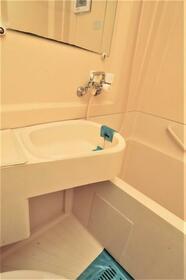 メゾン・ド・マルス 0105号室の洗面所
