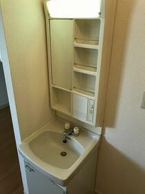 スリーエス・コーポ 202号室の洗面所