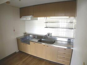 サニーパーク壱番館 203号室のキッチン
