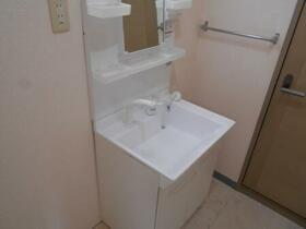 ラ・リュッシュ A 101号室の洗面所