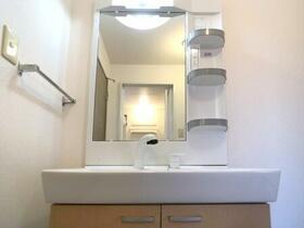 フォレストヒルズ 202号室の洗面所