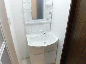 ルメール秋津 101号室の洗面所