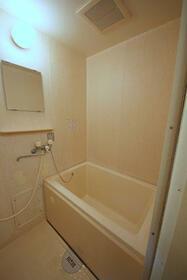 トップフラッツD棟 102号室の風呂