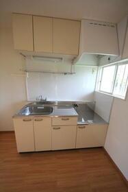 トップフラッツD棟 102号室のキッチン