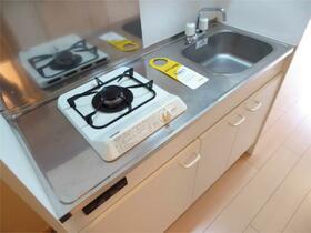 グリーンヒルズ横濱(ハーミットクラブハウス) 202号室のキッチン