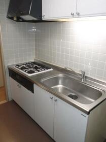 横山ガーデンヒルズ 501号室のキッチン