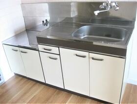 ルミエール高崎 308号室のキッチン