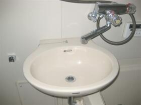 ルミエール高崎 308号室の洗面所