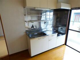 メゾンけやきIII 203号室のキッチン