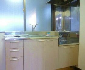 カーサわたなべ 101号室のキッチン