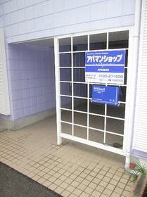 藤間コーポ 0202号室のエントランス