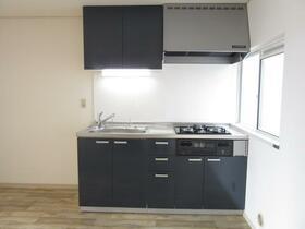 グリーンハイツ欅 101号室のキッチン