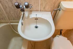 ラ・レジダンス・ド・ポローニア 0201号室の洗面所