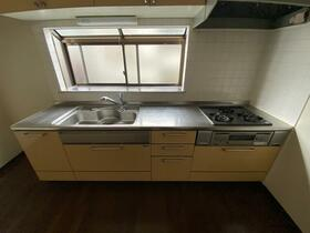 東大泉パークハイツ 101号室のキッチン