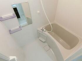 ハーミットクラブハウス霞台IV(仮) 102号室の風呂