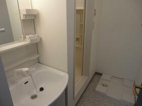 リッツコート 202号室の洗面所