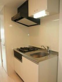 ライズ中野松が丘 205号室のキッチン