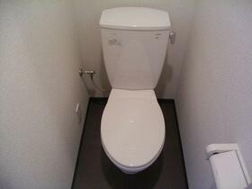 フェニックス新横濱エオール 309号室のトイレ