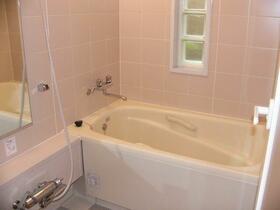 CSヒルズ 101号室の風呂