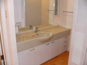 CSヒルズ 101号室の洗面所