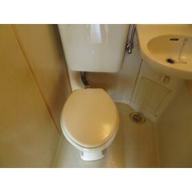 ブリス上石神井 0302号室のトイレ