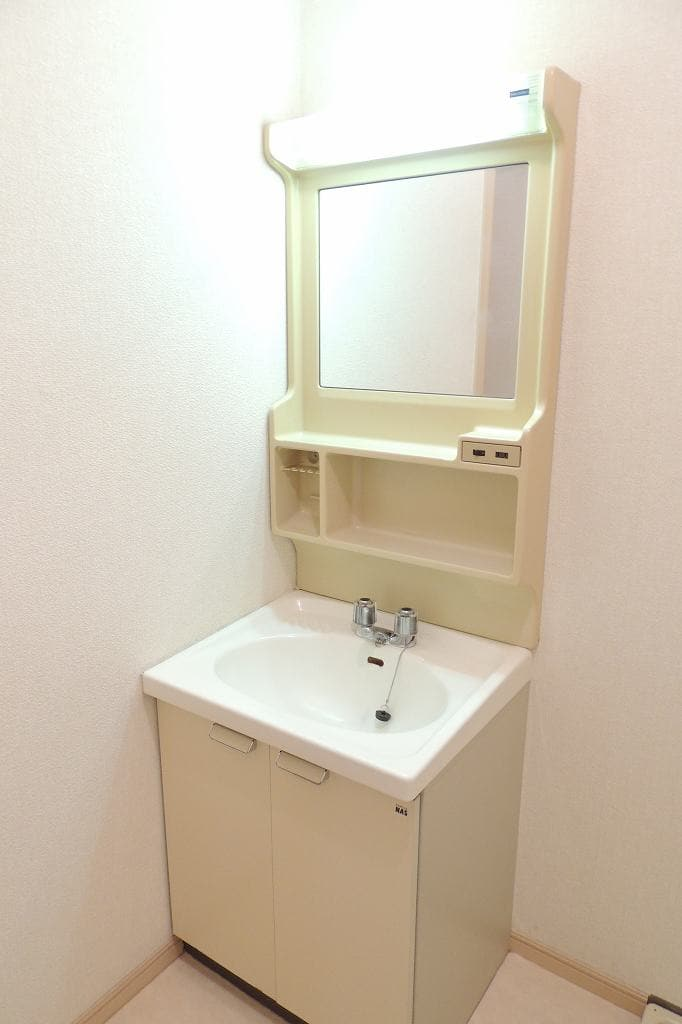 エルディム藤村B 01020号室の洗面所