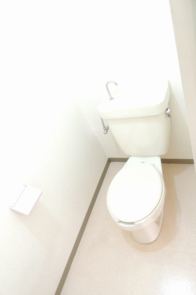 エルディム藤村B 01020号室のトイレ
