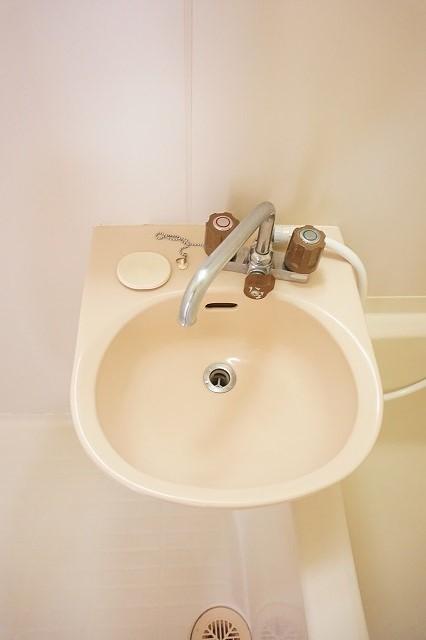 ハイム・トシ 01040号室の洗面所