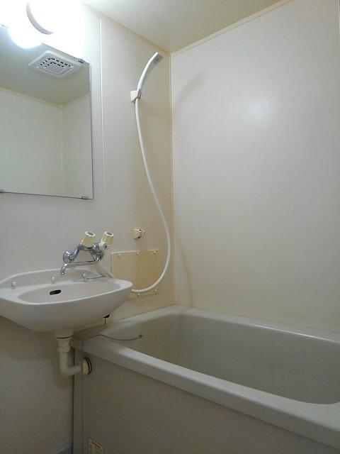 エルディムティンクル 206号室の風呂