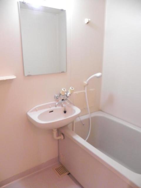 エルディムパークサイド 02010号室の風呂