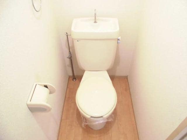 ドリーム半田 02010号室のトイレ