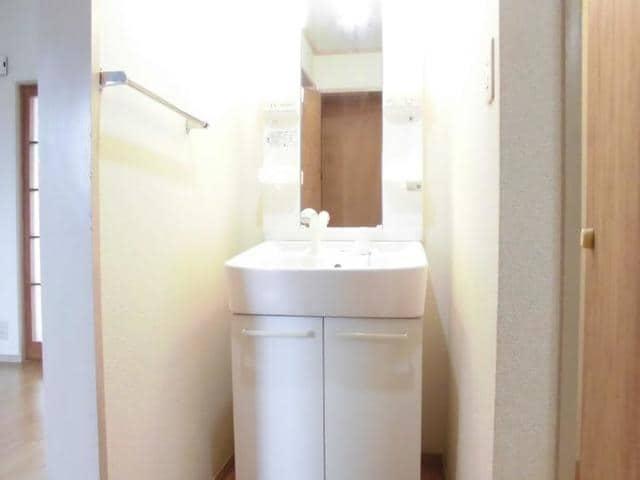 ドリーム半田 02010号室の洗面所
