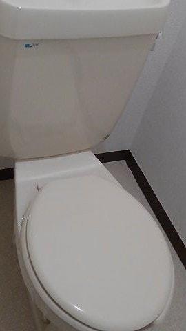 ニューシティー21 01050号室のトイレ