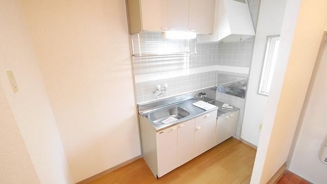 ニューシティ大瀧Ⅲ 01010号室のキッチン