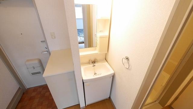 ニューシティ大瀧Ⅲ 01010号室の洗面所