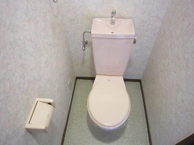 グランドバレー 03050号室のトイレ